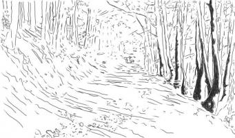 Lothar Rumold: Waldweg bei La Vancelle, 2017, Tablet-Zeichnung, 41:70