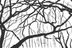 Lothar_Rumold_171004_01_Tablet-Zeichnung